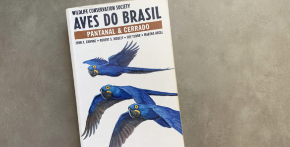 guia de aves do pantanal e cerrado