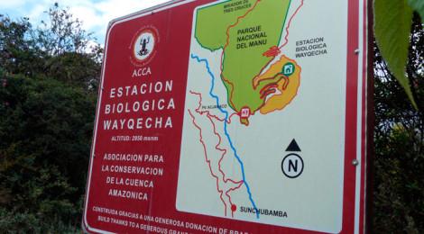 Estación Biológica Wayqecha
