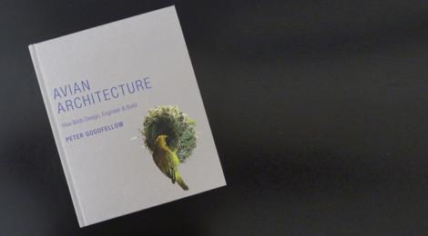 livro avian architecture