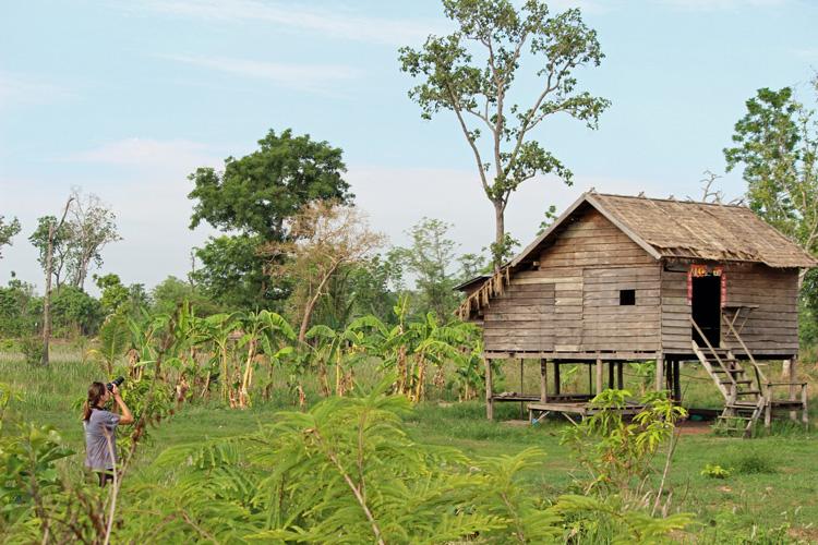 observação de aves no Camboja
