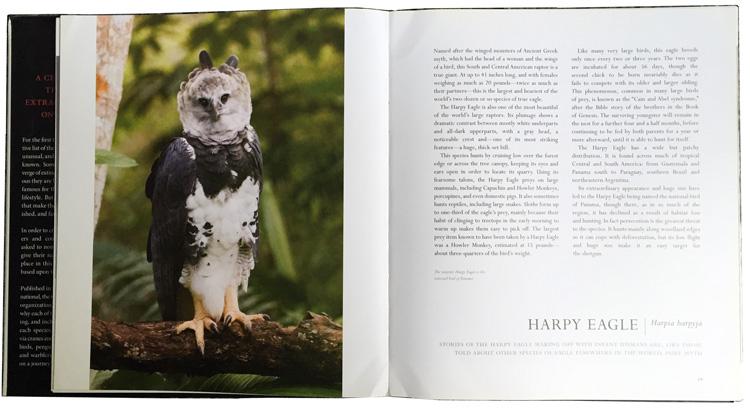 harpia no livro