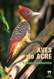 aves do acre - edson guilherme