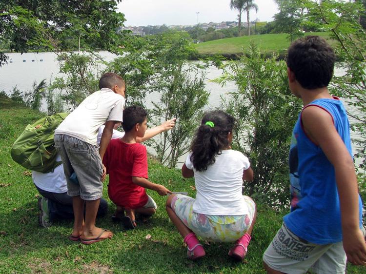 crianças observando aves