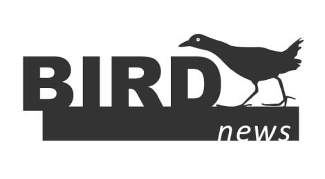 BirdNews | Janeiro 2018