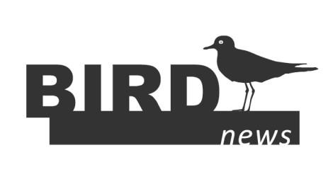 BirdNews | Fevereiro 2018