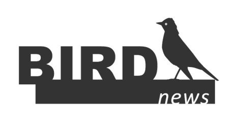 BirdNews | Março 2018