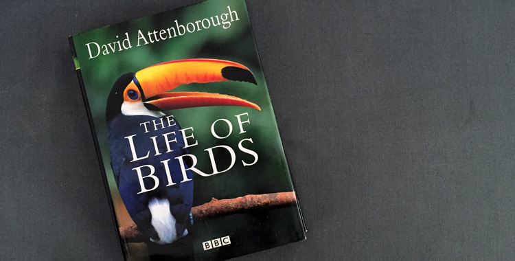 The life of birds - BBC