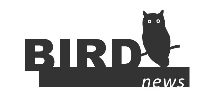 birdnews abril 2016