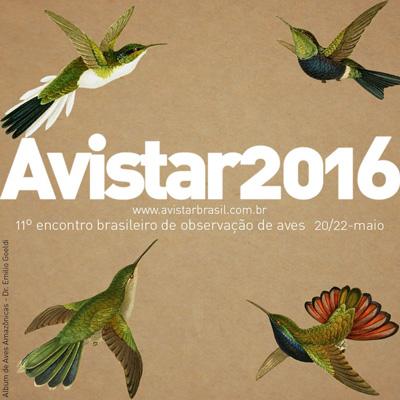 avistar2016