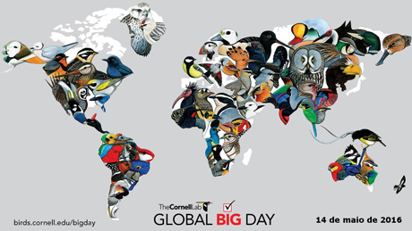 global big day 2016