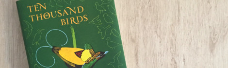 ten thousand birds book