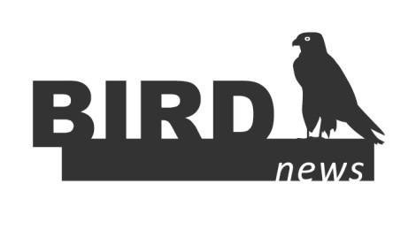 BirdNews | Julho 2018