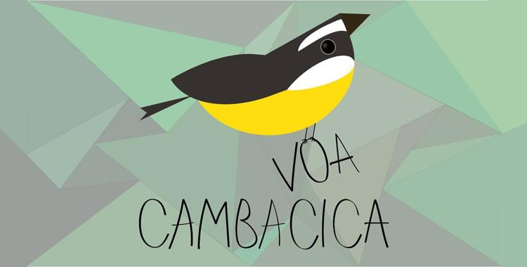 Voa Cambacica - Projeto quer levar a natureza aos olhos das pessoas