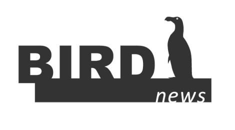 BirdNews | Setembro 2016
