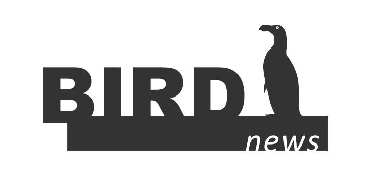 BirdNews   Setembro 2016
