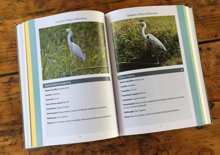 aves da unicamp