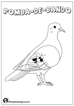 aves-brasileiras-para-colorir-pomba-de-bando