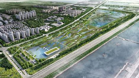 aeroporto para aves migratórias na China