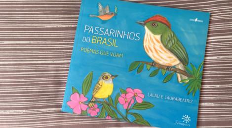 Passarinhos do Brasil
