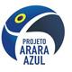 projeto arara azul