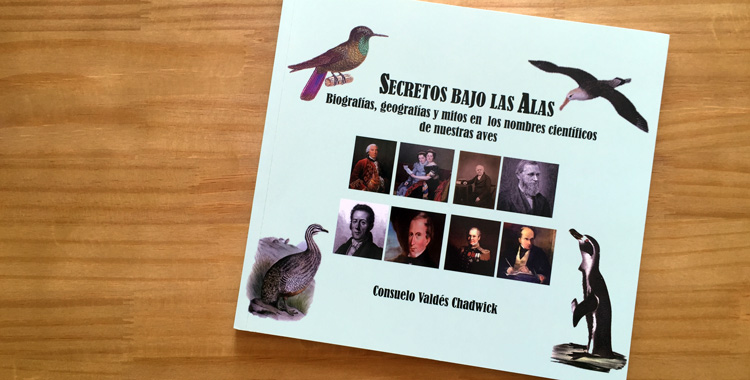 Secretos bajos las Alas - capa do livro