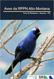 aves da rppn alto-montana