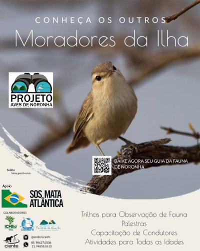 Mini-guia das aves de Noronha