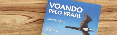 Voando pelo Brasil (livro)