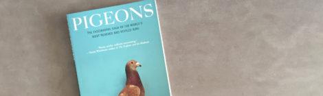 """capa do livro """"Pigeons"""""""