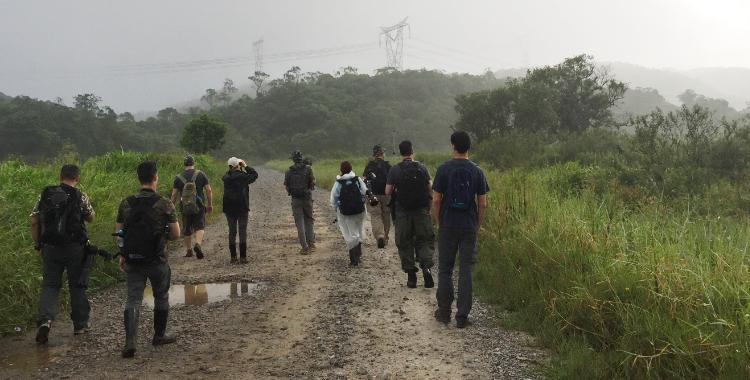 Passarinhada em Paranapiacaba, SP