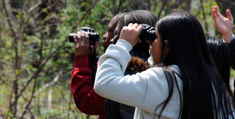 crianças observando com binóculos