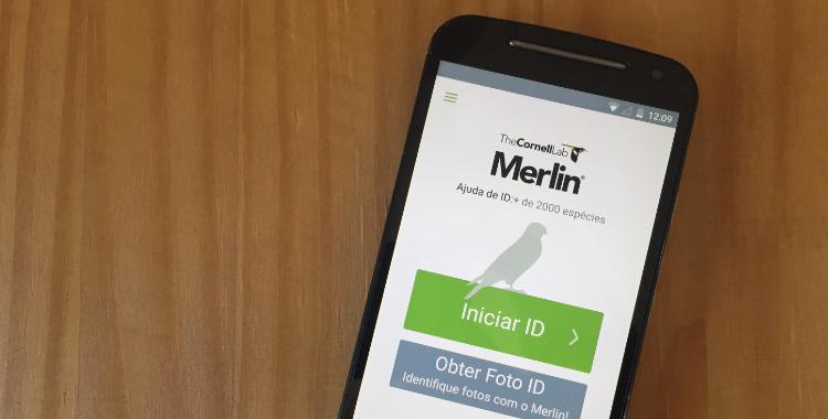aplicativo de identificação de aves Merlin