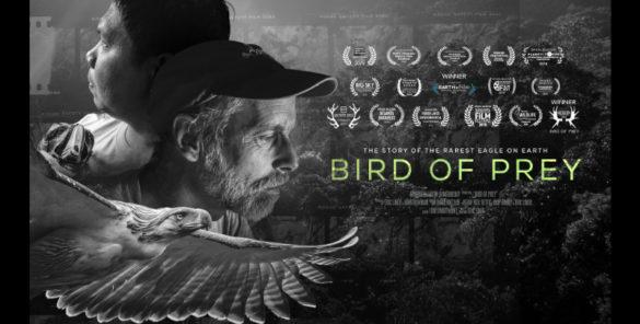Poster do documentário Bird of Prey