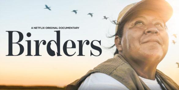documentário passarinheiros